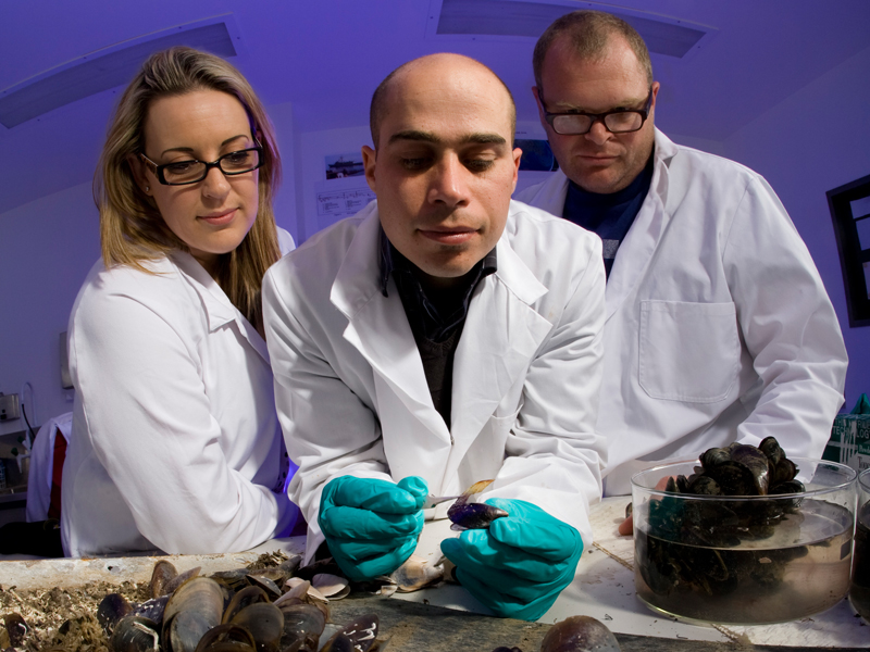 Defence scientists research the effects of biofouling on marine vessels