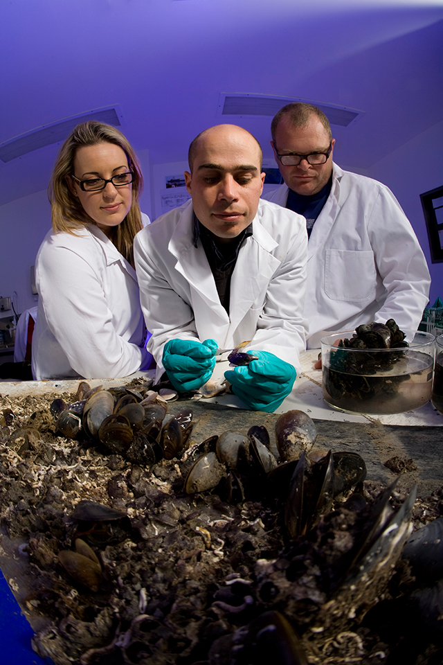 As part of its research to enhance naval fleet performance by protecting it from marine fouling growth, DSTO is investigating the effectiveness of new-generation antifouling coatings and paints and other minimisation strategies to ensure they are environmentally safe and effective in Australian conditions.