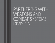 DST Weapons and Combat Systems Division brochure identity